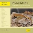 Pagekoni rodu Rhacodactylus