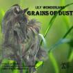 Grains of Dust
