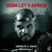 Sedm let v Africe