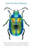 Úžasný hmyz